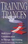 TRAINING TRANCES : Multi-Level Communication In Therapy & Training