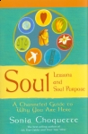 SOUL LESSONS & SOUL PURPOSE : A Chanelled Guide To Why You Are Here